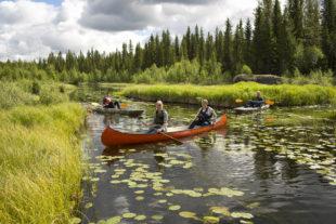 Familievakantie Zweden Skandi camp