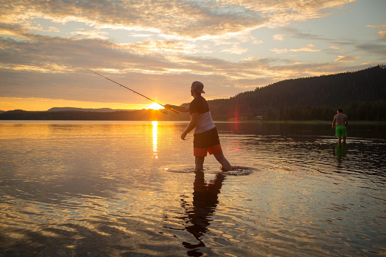 Vissen in Zweden